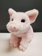 Betina the Pig 10