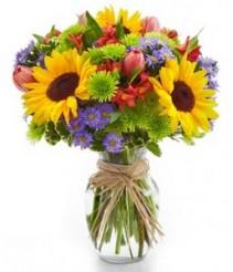 Fun Floral Garden  Best Sellers
