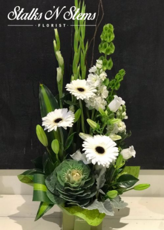 Bianca Arrangement