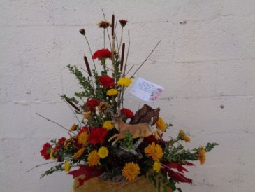 Big Buck Arrangement (local delivery only)