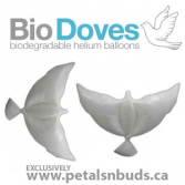 Bio Doves Balloon Bouquet