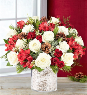 Birch Woods Christmas, Regenerate into 2021 Birches Are Regenerative, call for an actual Birch Bark Container in Gainesville, FL | PRANGE'S FLORIST