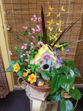 Bird House Garden