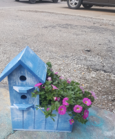 Bird House with Annual OUTDOOR PLANT
