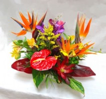 Bird of Paradise and Antherium  Enchanted Florist Special Design