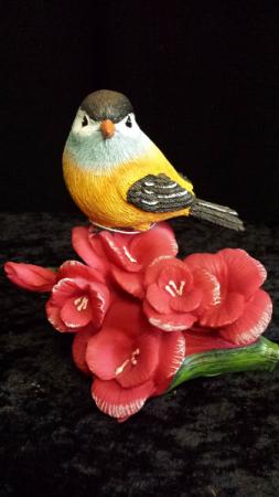 Bird of the month August bird with gladiolus flower