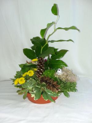 Bird Song Design Tray in Norway, ME | Green Gardens Florist & Gift Shop