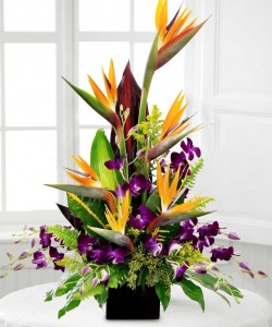 Birds and Orchids High Style Arrangement
