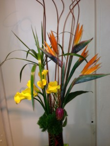 Birds Of Paradise And Mini Calla Lilies