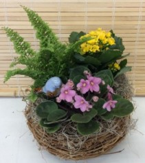 Bird's Nest Basket