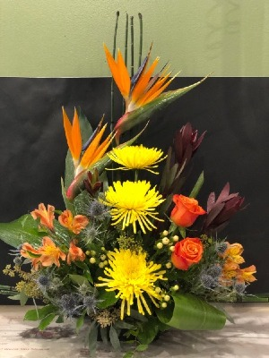 Birds of Paradise Home in Winnipeg, MB | CHARLESWOOD FLORISTS