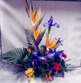 Birds of Paradise & Iris Floral Design