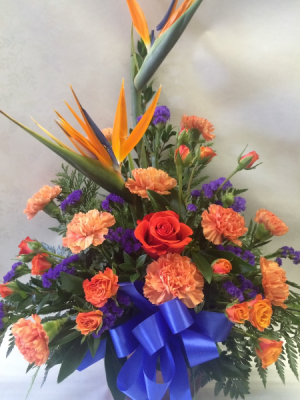 Birds of Paradise Tropical Arrangement in Red Lake, ON | FOREVER GREEN GIFT BOUTIQUE