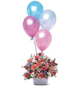Celebration Flower Basket And Balloons TF46 1 Fresh Floral Arrangement