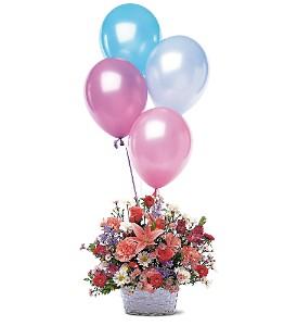 Celebration Flower Basket and Balloons      TF46-1 Fresh Floral Arrangement