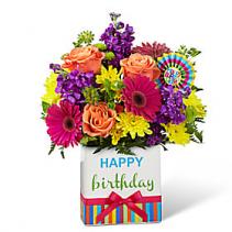 Birthday bliss Birthday tribute