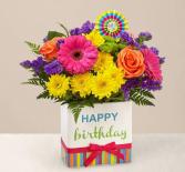 Birthday Brights  in Beaufort, South Carolina | Smiling Petals Flower Shop