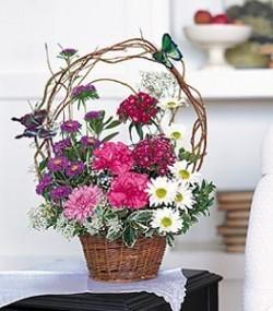 Birthday Butterflies Basket