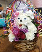 Birthday doggie  in Fairfield, California | TERESITA FLORAL CREATIONS