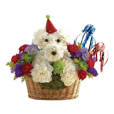 Happy Birthday Dog-Able Flowers