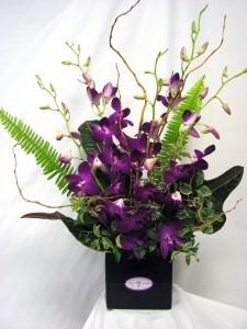 BIRTHDAY ORCHIDS Fresh Cut Arrangement