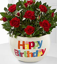 birthday planter