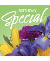 Birthday Special Designer's Choice in Bellingham, Washington | M & M FLORAL & GIFTS