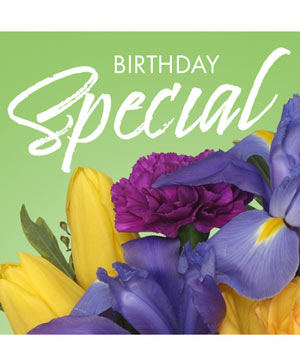 Birthday Special Designer's Choice in Naugatuck, CT | TERRI'S FLOWER SHOP