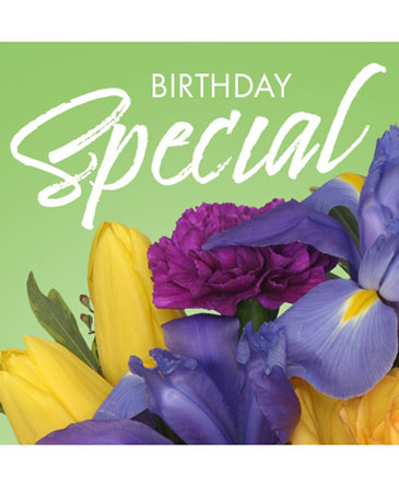 Birthday Special Designer's Choice