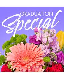 Graduation Special Designer's Choice