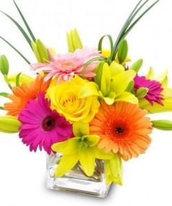 Birthday Suprise Vase