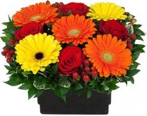 BIRTHDAY WISHES Arrangement in Port Stanley, ON | FLOWERS BY ROSITA