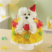 Birthday Wishes Flower Cake™ Pupcake™ Arrangement