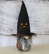 Black Cat witch