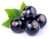 Black Currant Infused Balsamic Vinegar