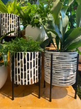 "Black Gold White  ceramic planter on stand for 6"" plant"