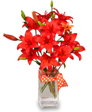 BLAZING ORANGE LILIES Arrangement in Abbotsford, BC | BUCKETS FRESH FLOWER MARKET