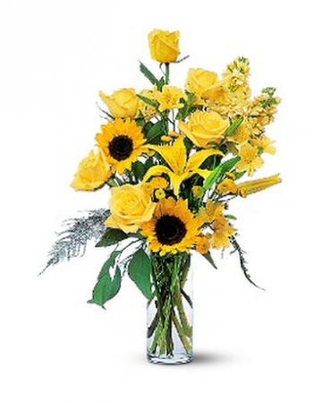 Blazing Sunflowers