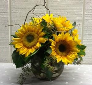 Blazing Sunflowers Vase Arrangement in Fairfield, CT | Blossoms at Dailey's Flower Shop