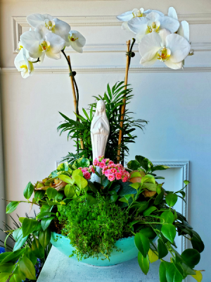 Blessed Mother Dish Garden  Large White Orchid Dish Garden in Wantagh, NY | Numa's Florist