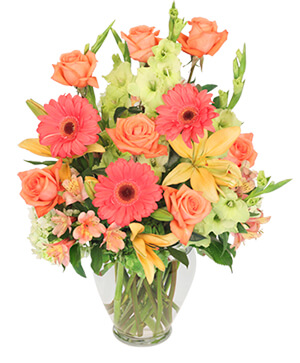 Brilliance Bouquet in Fort Myers, FL | VERONICA SHOEMAKER FLORIST LLC