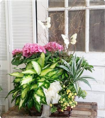Blissful Butterfly Basket  European Garden Basket