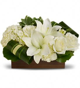Blissful Dream - 104 Arrangement