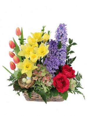 Blissful Garden Flower Basket in Bath, NY | VAN SCOTER FLORISTS
