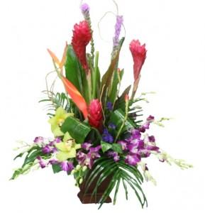 BLISSFULLY TROPICAL Flower Arrangement in Riverside, CA | Willow Branch Florist of Riverside