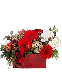 Blitzen's Blossom Box Christmas Flowers