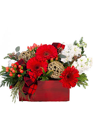 Blitzen's Blossom Box Christmas Flowers in Miami, FL | Greensical Flowers Gifts & Decor