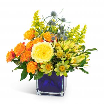 Bloom Bright Arrangement