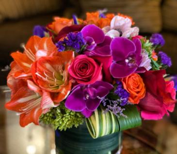 Beautiful Expression of Love Celebrate