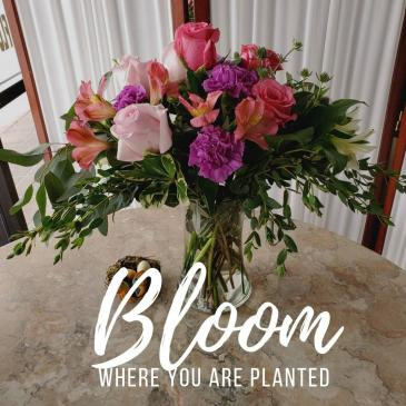 Bloom where you are planted Mother's Day